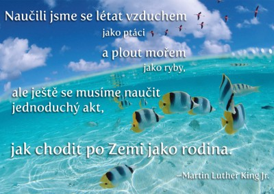 Martin Luther King – citát