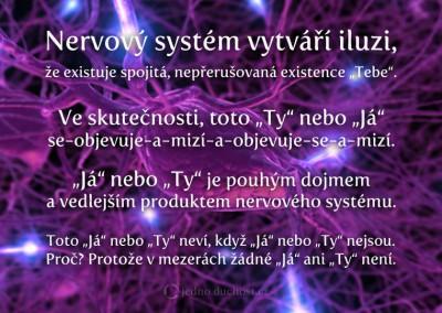 Iluze nervového systému